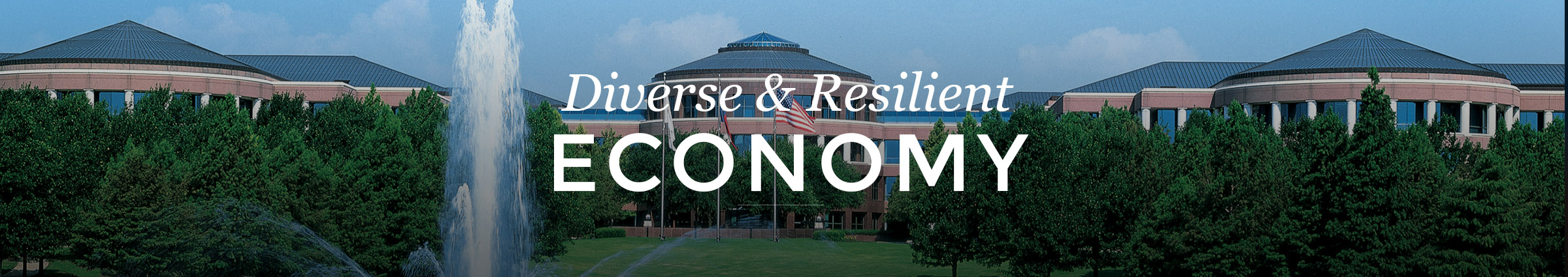 Diverse and Resilient Economy