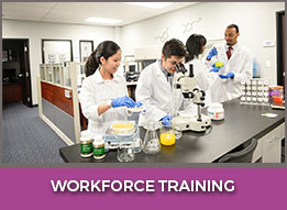 Workforce Training