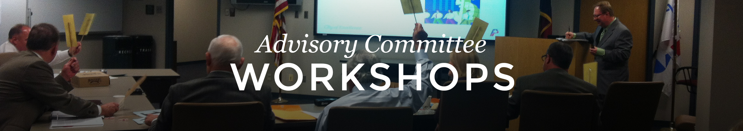Advisory Committee Workshops