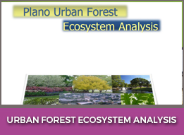 Urban Forest EcoSystem Analysis